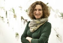 Küratör ve eğitmen Vasıf Kortun, sanatçı Hera Büyüktaşçıyan ve SAHA Studio'nun direktörlüğünü üstlenen küratör Çelenk Bafra'dan oluşan kurul seçim sürecinde SAHA'nın işbirliği yaptığı bağımsız sanat inisiyatifleri Ankara'dan Torun, Çanakkale'den sub, Diyarbakır'dan Loading, İzmir'den Hayy ve Karantina'dan da sanatçı önerileri aldı. SAHA Studio'nun Ağustos 2019-Şubat 2020 arasındaki ilk altı aylık dönemine katılan sanatçılar: Larissa Araz (1990, İstanbul), Alper Aydın (1989, Ordu), Özgür Demirci (1982, İzmir) ve Sibel Horada (1980, İstanbul). Tüm detay haberler Protokol Haber'de.
